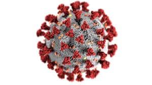 Nieuw Coronavirus (Ziekte: COVID-19, Virus: SARS-CoV-2) | Coronavirus Covid -19